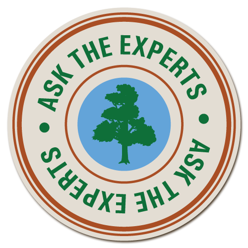Ask the Tree Care Experts