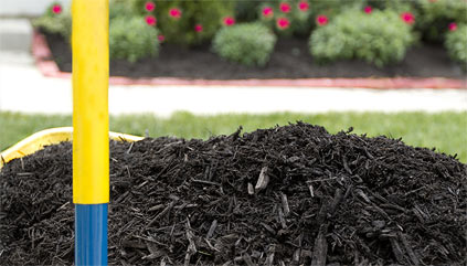 Mulching <span class='post-subtitle'>Tips & Information</span>