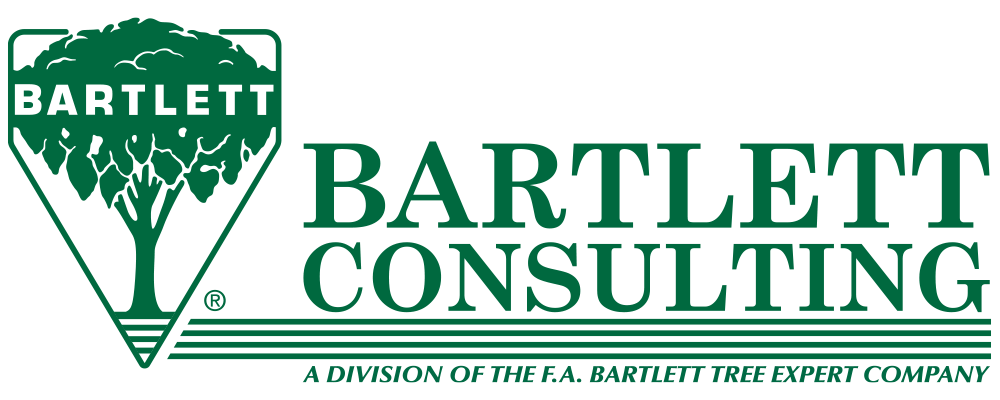 bartlett consulting logo